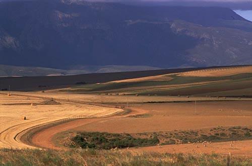 Foto sudafrica paesaggio for Sud africa immagini